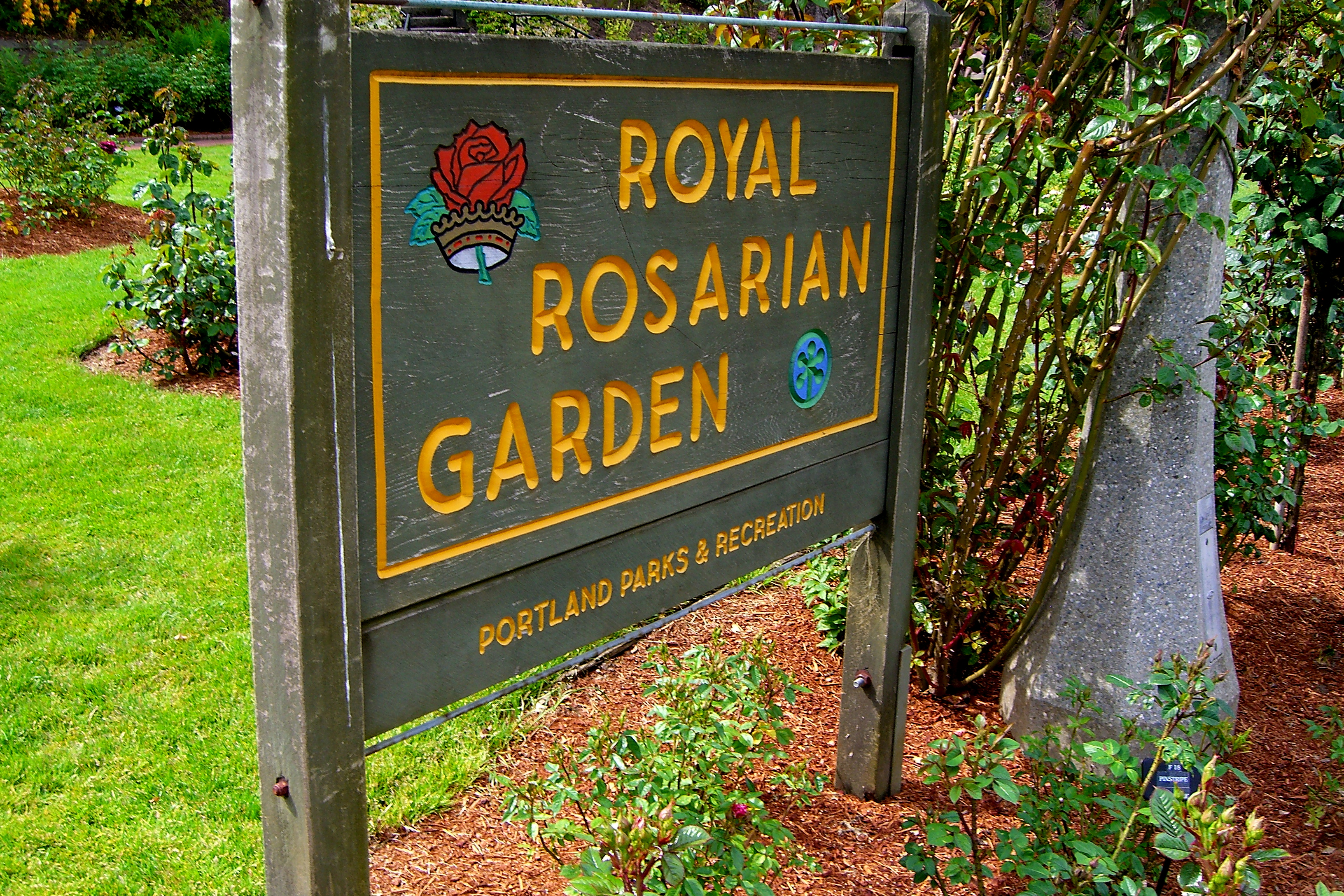 International rose test garden kristi does pdx - Portland japanese garden admission ...
