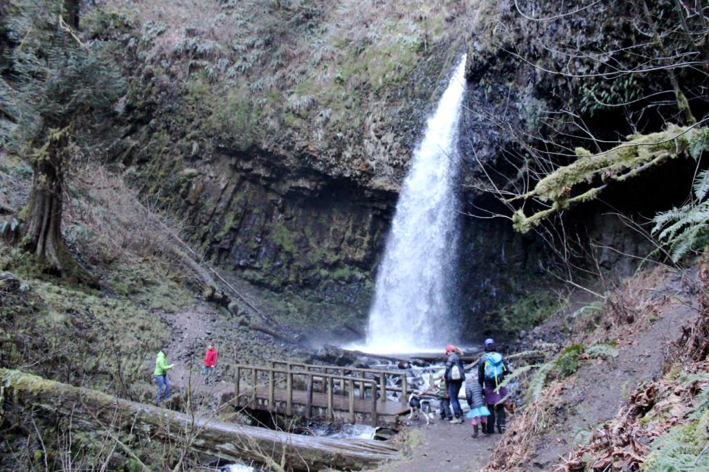 latourell falls 6