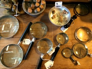 Paxton Gate Magnifying Glasses