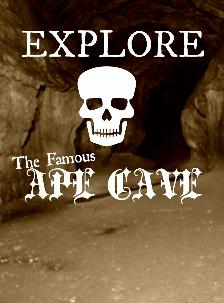 Visit Ape Cave on the south side of Mt. St. Helens.  Fun for the whole family and not as scary as it seems.  kristidoespdx.com