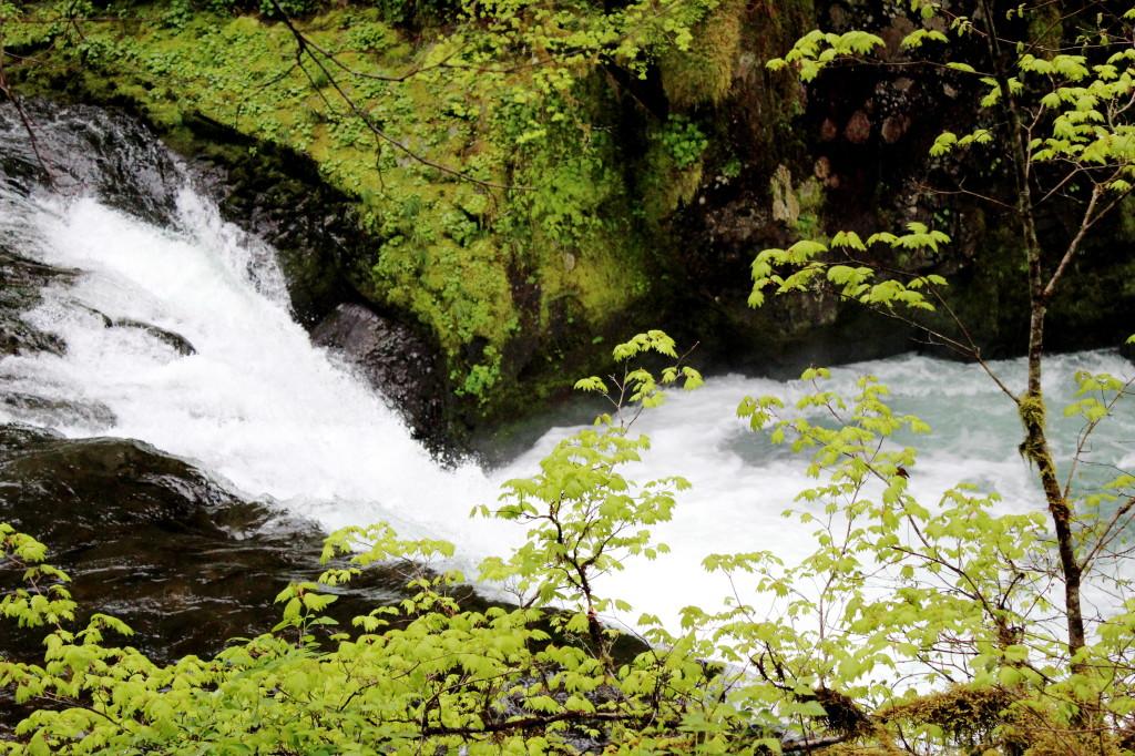 Eagle Creek Falls Below Punch bowl