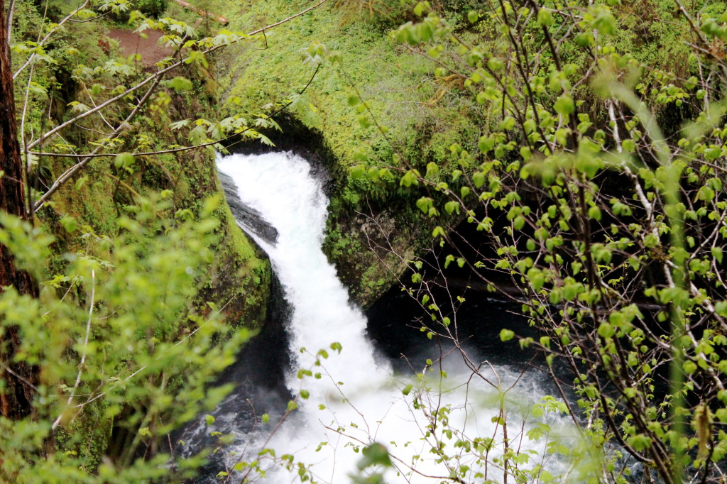 Eagle Creek Punch Bowl Falls