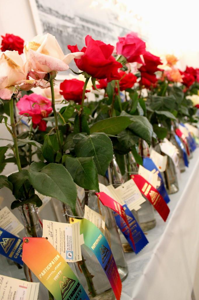 mult co fair 2014 roses