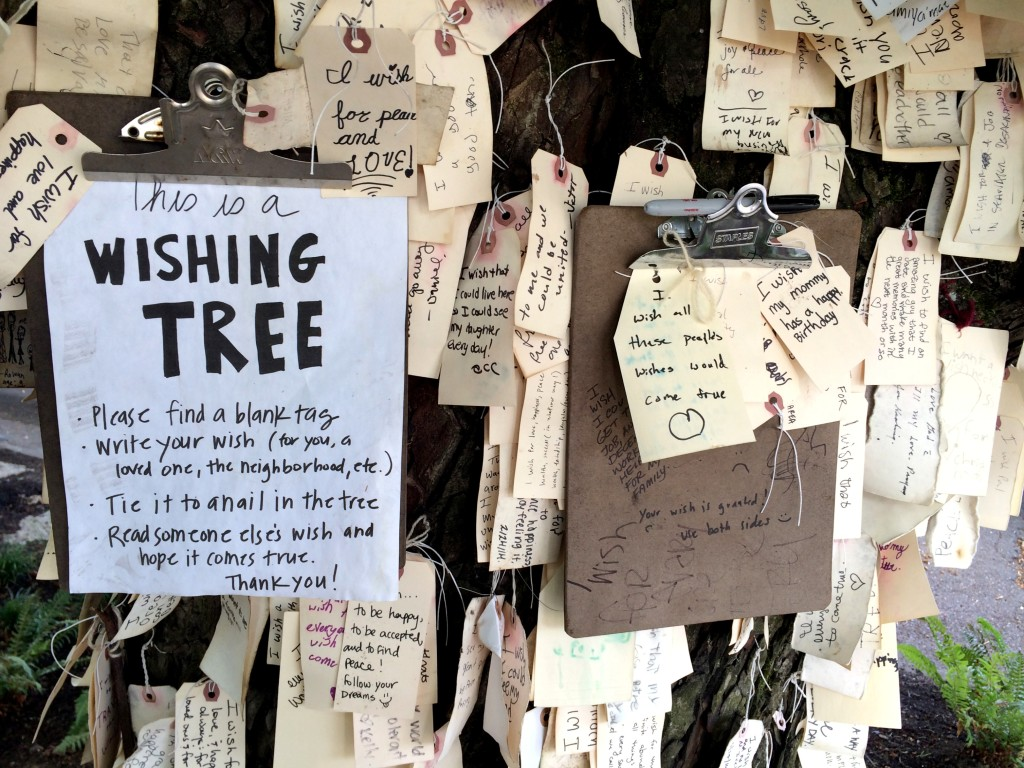 wishing tree 2