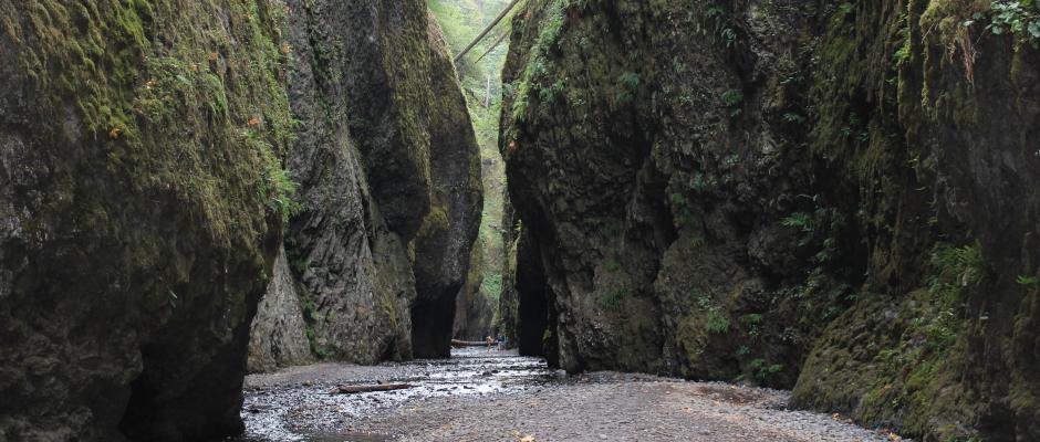 Oneonta Gorge 1