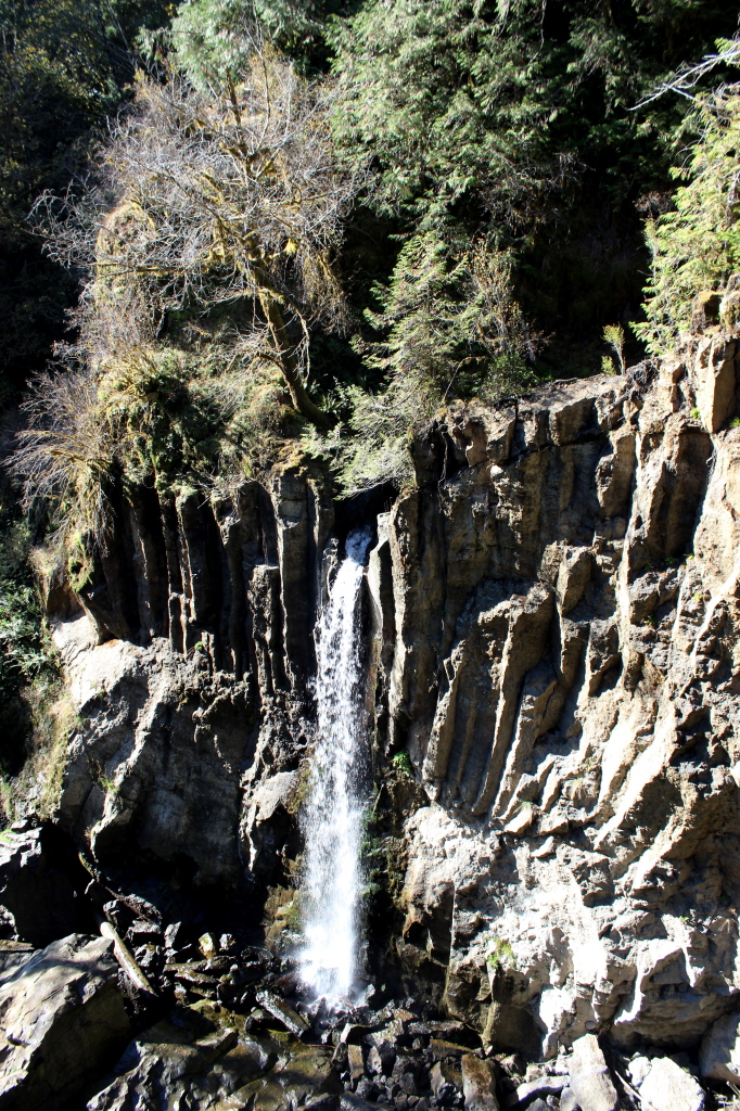 Drift Creek Falls 3
