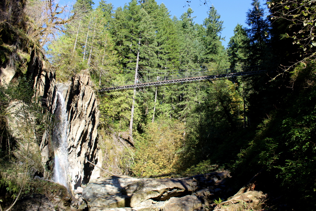 Drift Creek Falls 6