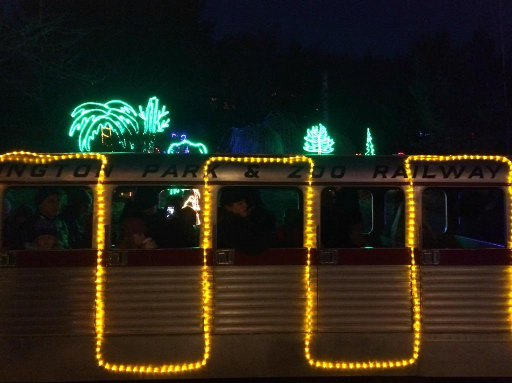 zoo lights 1