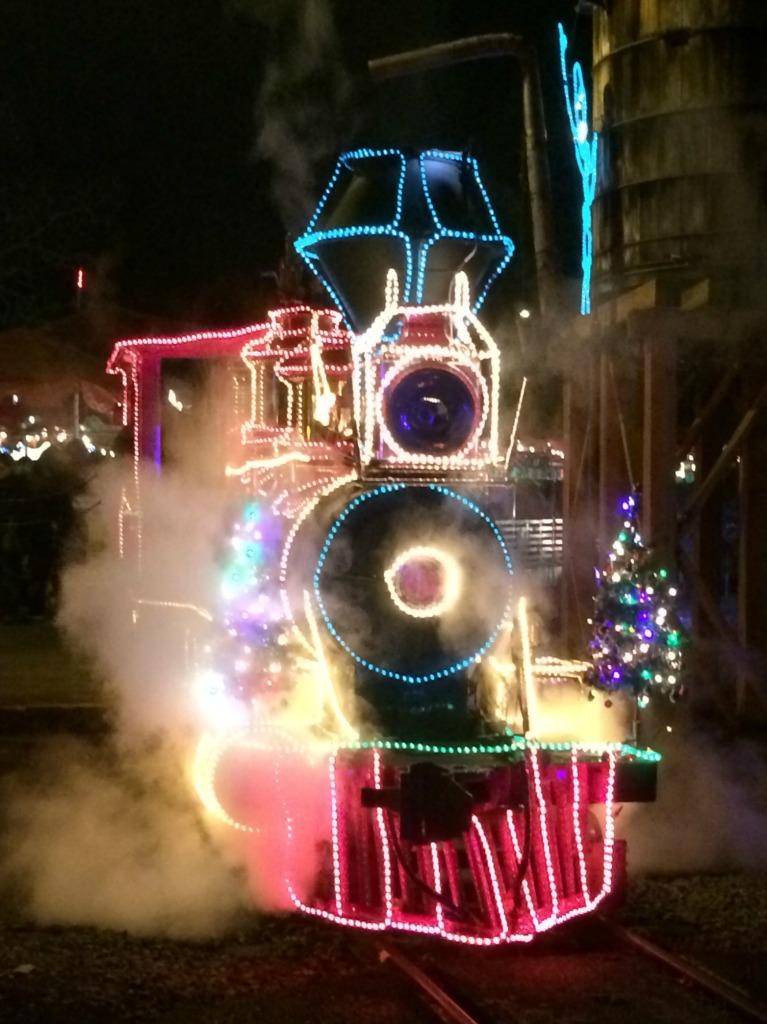zoo train 5