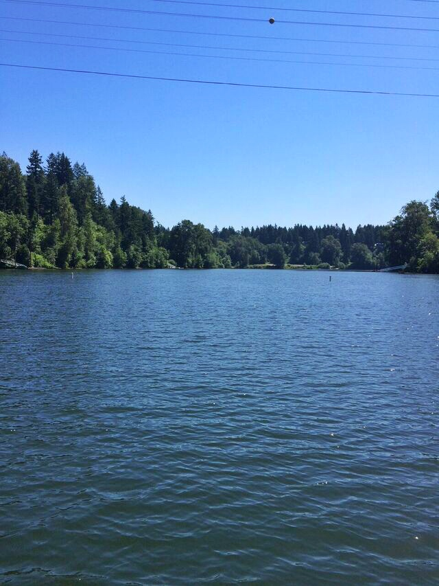 Canby ferry willamette River