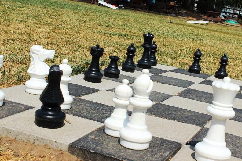 Rogue farm giant chess
