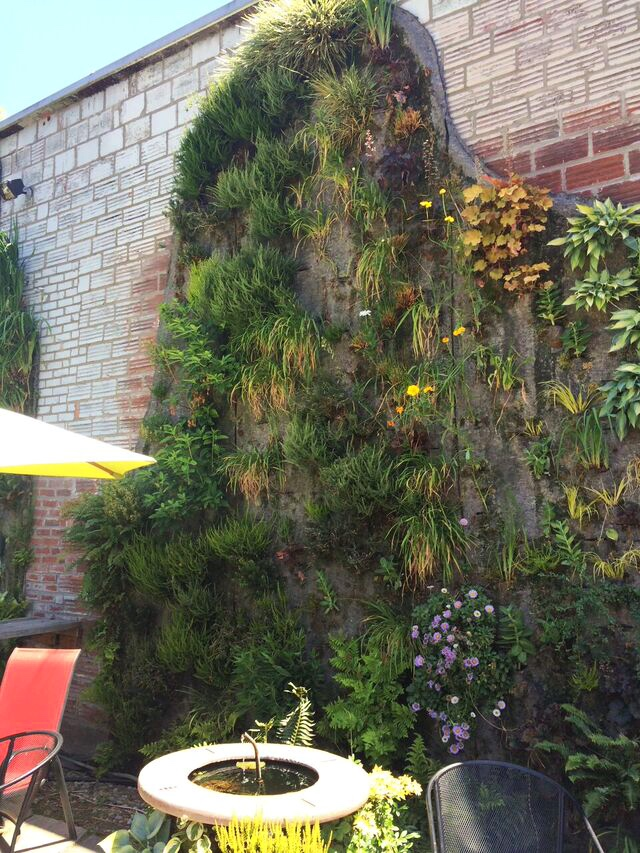 Singer cafe vertical garden