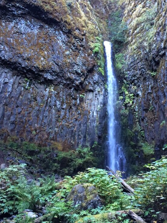 Dry Creek Falls Wide