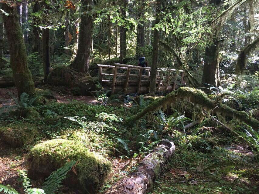 Old Salmon River Trail bridge
