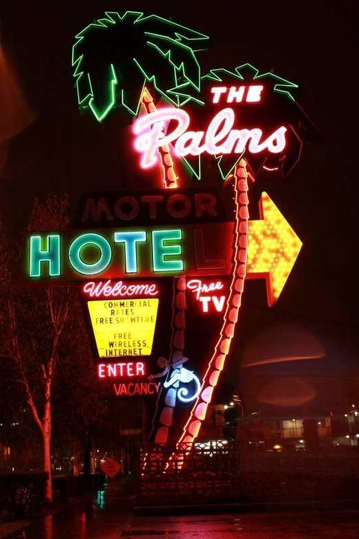 Best neon the palms