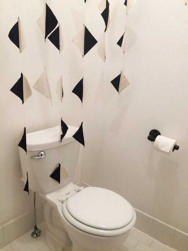Content2015 flag toilet