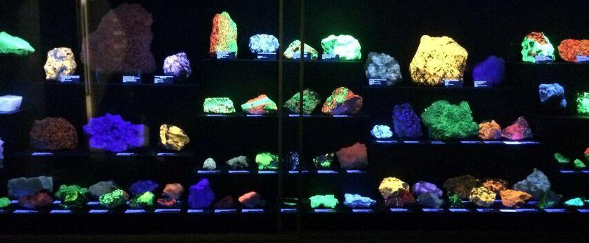 Rice Museum fluorescent room