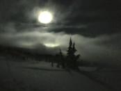 moonlight snowshoe moon