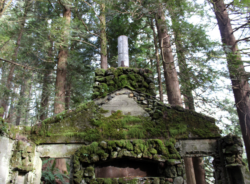 skamania stone house chimney hearth