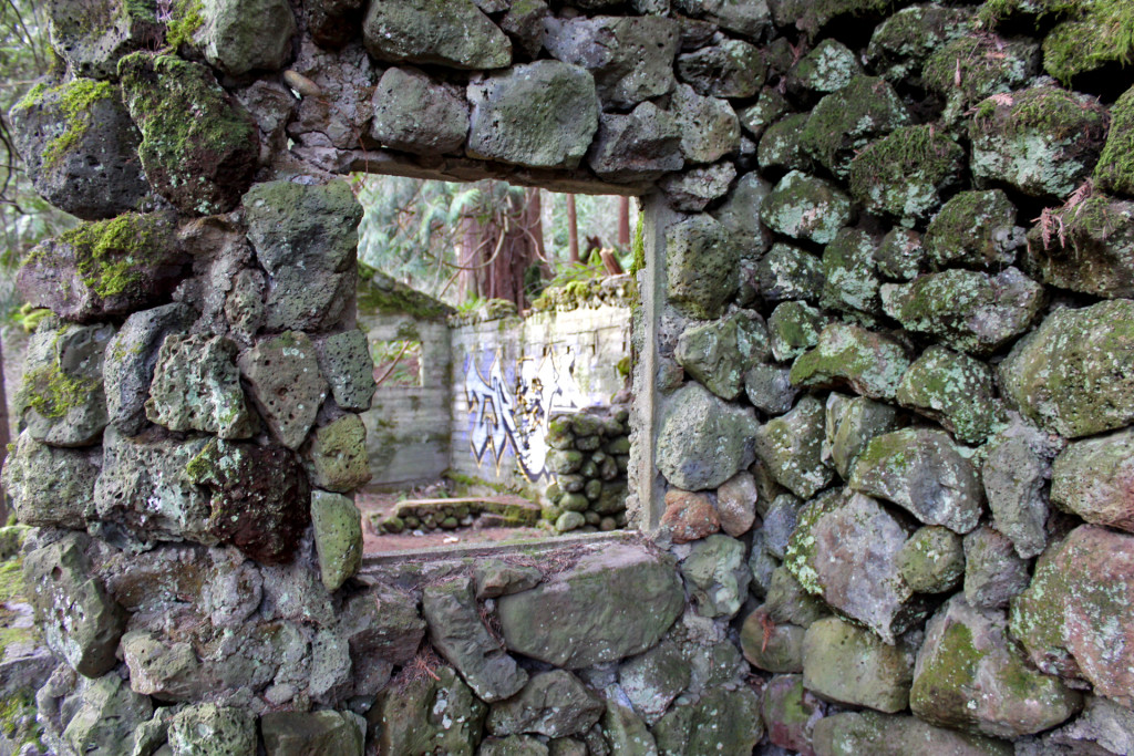 skamania stone house window view