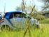 Sauvie Island Car2Go Cover