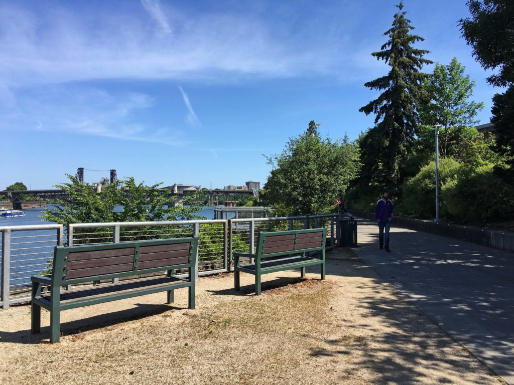 Waterfront Loop Benches with view