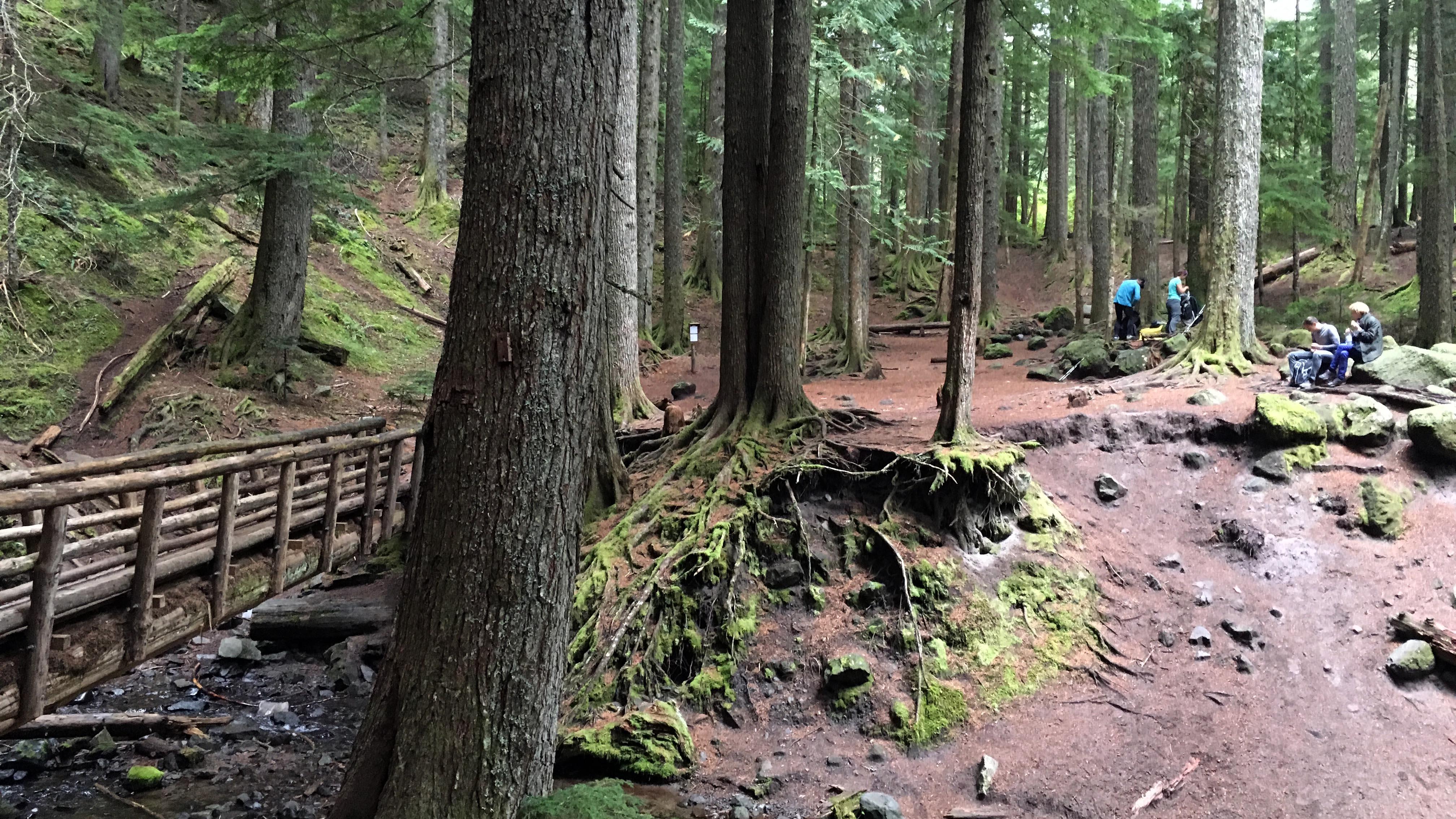 ramona-falls-rest-spot
