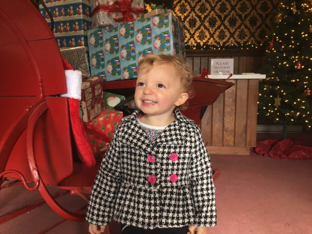 christmas-in-dairyville-brigitte-smile