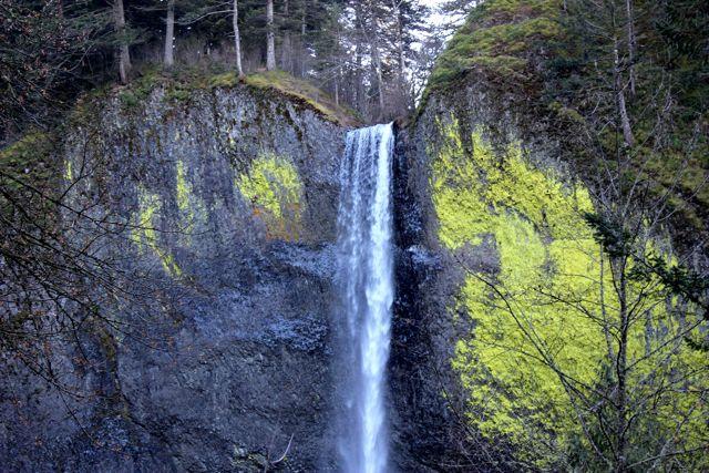 latourell falls cover